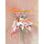 Orchids  - XBFL1937  -  PRINT