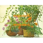 Plants  - XBFL922  -  PRINT