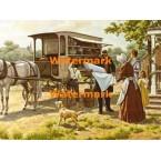 Vendor Cart  - XKFJ1257  -  PRINT
