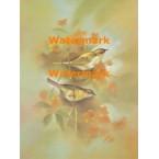 Birds & Flowers  - XS7000  -  PRINT