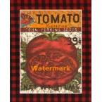 Tomato  - #XKFL7731  -  PRINT