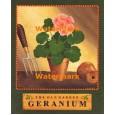 The Old Garden Geranium  - #XAR7401  -  PRINT