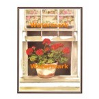 1.  Cottage Geraniums  - #XKFL8643  -  PRINT