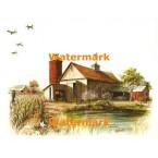 Weathervane Barn  - #XKL8147  -  PRINT
