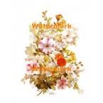 White Petunias  - #XKL8023  -  PRINT