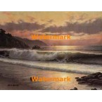 1.  Sunlight Coast  - #XKL8229  -  PRINT