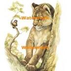 Lion Cub and Bird  - #XKH8886  -  PRINT
