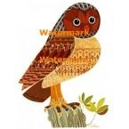Owl  - XBAN585  -  PRINT