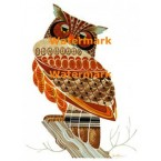 Owl  - XBAN586  -  PRINT