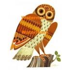 Owl  - XBAN587  -  PRINT