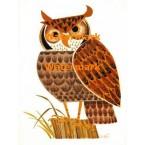 Owl  - XBAN588  -  PRINT