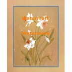 Daffodils  - XBFL1685  -  PRINT