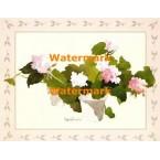 Flower Planter  - #XBFL1859  -  PRINT