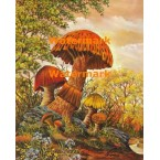 Forest of Mushrooms  - #XBFR172  -  PRINT