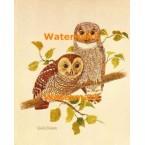 Owls  - #XD9066  -  PRINT