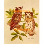 Owls  - #XD9067  -  PRINT