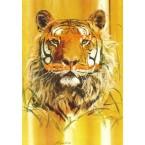 Tiger  - #XD9128  -  PRINT