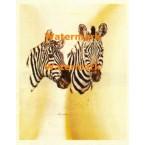 Zebras  - #XD9110  -  PRINT