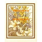 Daffodils  - #XD9462  -  PRINT