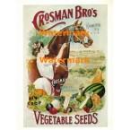Crosman Bro's Vegetable Seeds  - #XDNP21  -  PRINT