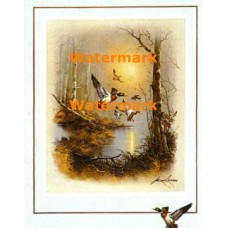 Ducks In Flight  - #XBBI-827  -  PRINT