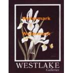 Westlake Iris  - #XBFL1634  -  PRINT
