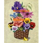 Pansies and Peach Rose in Basket  - XM420  -  PRINT