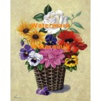 Pansies and White Rose in Basket  - XM421  -  PRINT