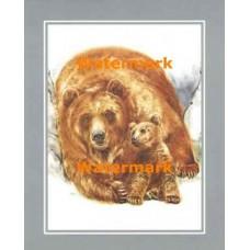 Bear Family  - #XS8532  -  PRINT