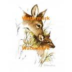 Deer  - #XS4409  -  PRINT