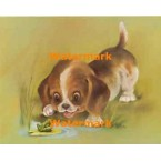 1.  Puppy & Frog  - #XS477  -  PRINT