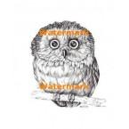 Owl  - #XS1676  -  PRINT