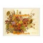 Floral Harvest  - #XS3415  -  PRINT