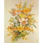 Daffodils  - #XS3560  -  PRINT