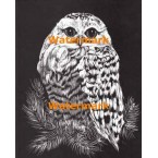 Owl  - #XS4310  -  PRINT