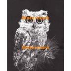 Owl  - #XS4313  -  PRINT