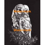 Owl  - #XS4316  -  PRINT