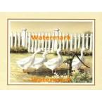 Waterpump Inspection  - #XS10367  -  PRINT