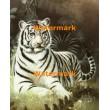 1.  Tiger  - #XS14488  -  PRINT