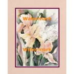Irises  -  #XS13463  -  PRINT