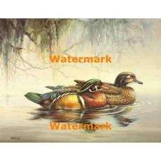 1.  Ducks  - #XS10245  -  PRINT