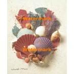 Seashells  - #XS17782  -  PRINT