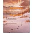 Footprints  - XS11341  -  PRINT
