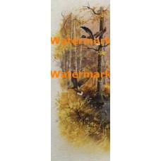 Marsh Ducks  - #XS11960  -  PRINT
