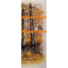 Marsh Ducks  - #XS11961  -  PRINT