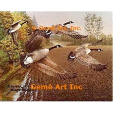 Geese Over Field  - #BOR27  -  PRINT