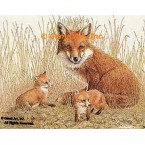 Fox Family  - #BOR4  -  PRINT