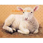Sheep  - #BOR51  -  PRINT