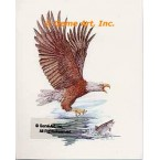 Eagle's Catch  - COR102  -  PRINT
