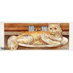 Cat in Sink  - #COR105  -  PRINT